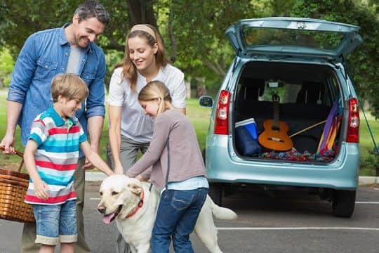 Up to 40% of British families include pets in their holiday plans